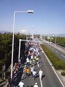 shonan-international-marathon-thumb.jpg